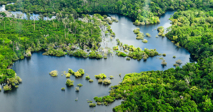 The Amazon became a no man's land